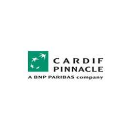 Image result for cardif pinnacle, Borehamwood